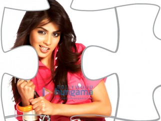 Movie Still From The Film Life Partner Featuring Genelia D'souza,Fardeen Khan