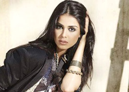 Genelia becomes face of Riteish's CCL team
