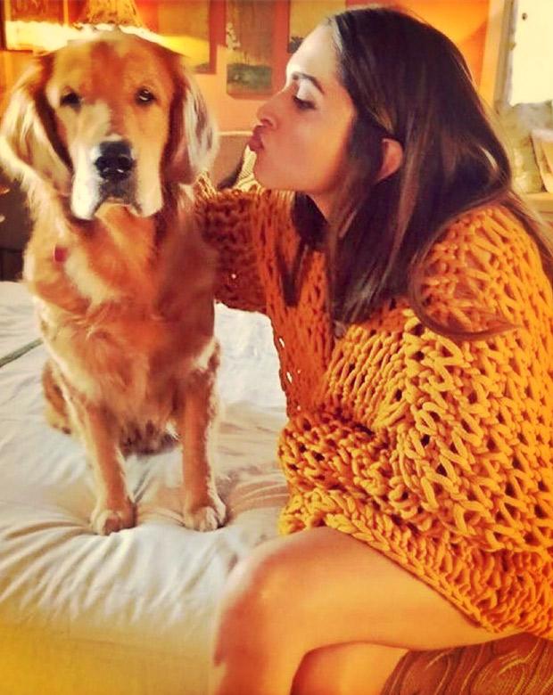 Hollywood popstar Nick Jonas leaves a comment on Deepika Padukone's photograph